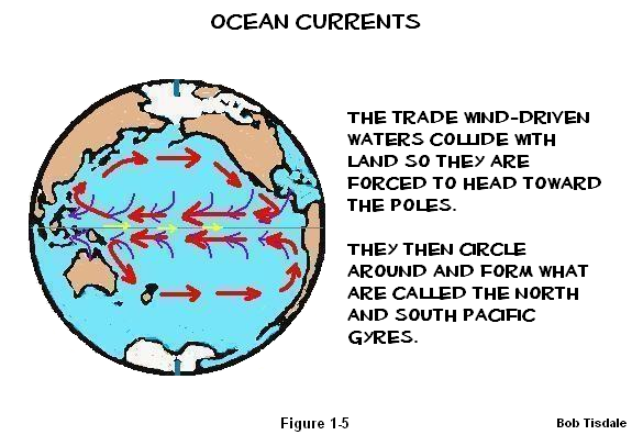 5 Trade Winds and Currents2