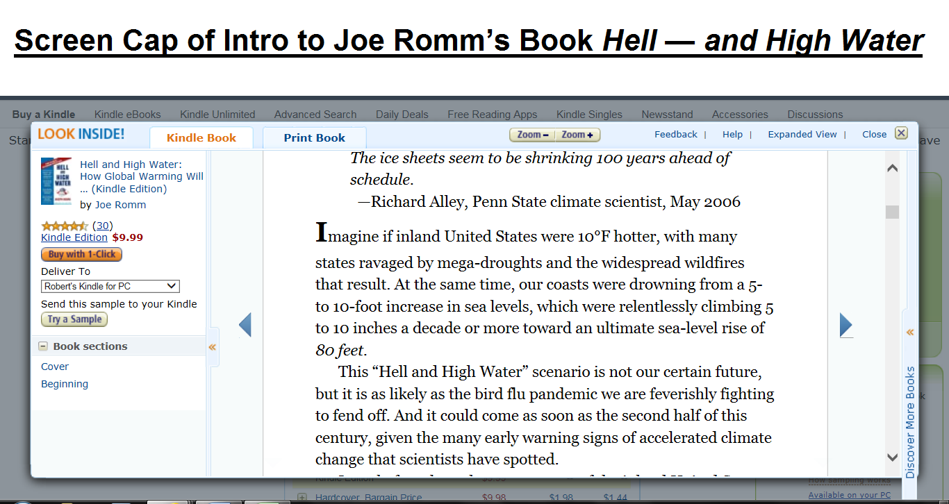 Kindle Preview Joe Romm Book