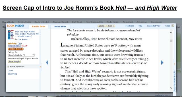 Kindle Preview Joe Romm Book